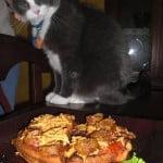 Lemew likes vegan pizza waffles