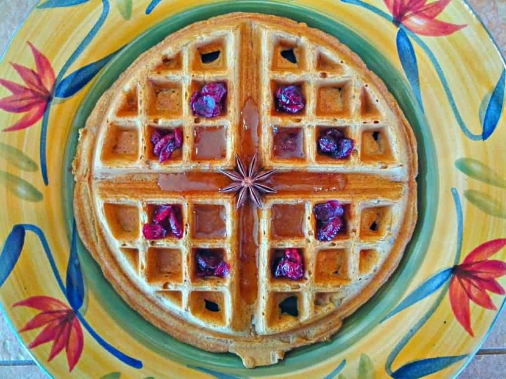 Sweet Anise Syrup on Naked Vegan Waffle with Dried Cranberries