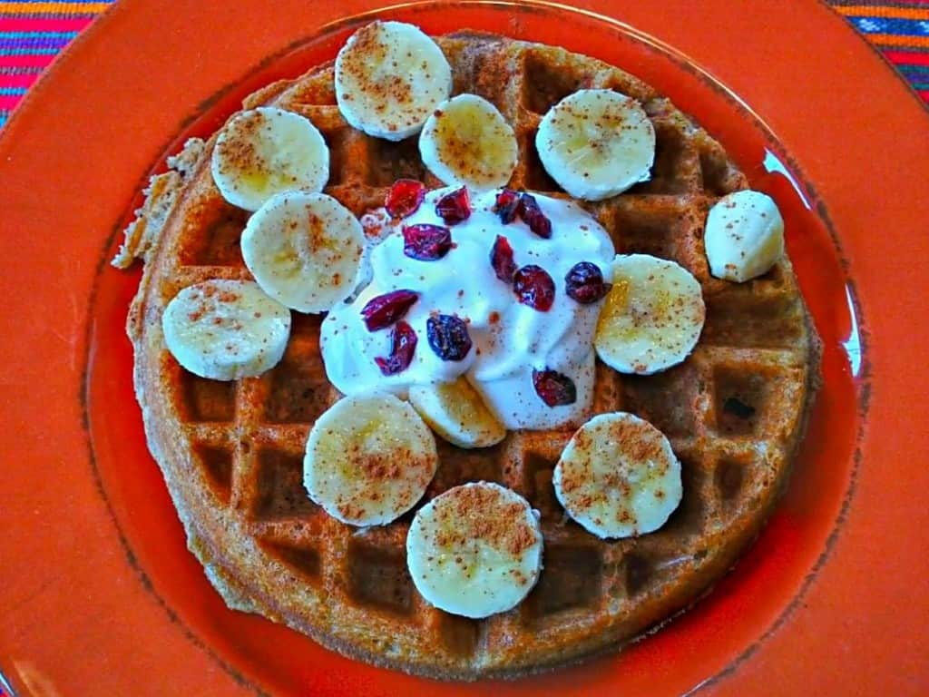 48-hour yeasted vegan waffle--aerial view