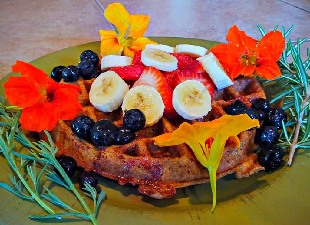 Yeast-Raised Vegan Waffle with Flowers, Blueberries, Strawberries, & Banana