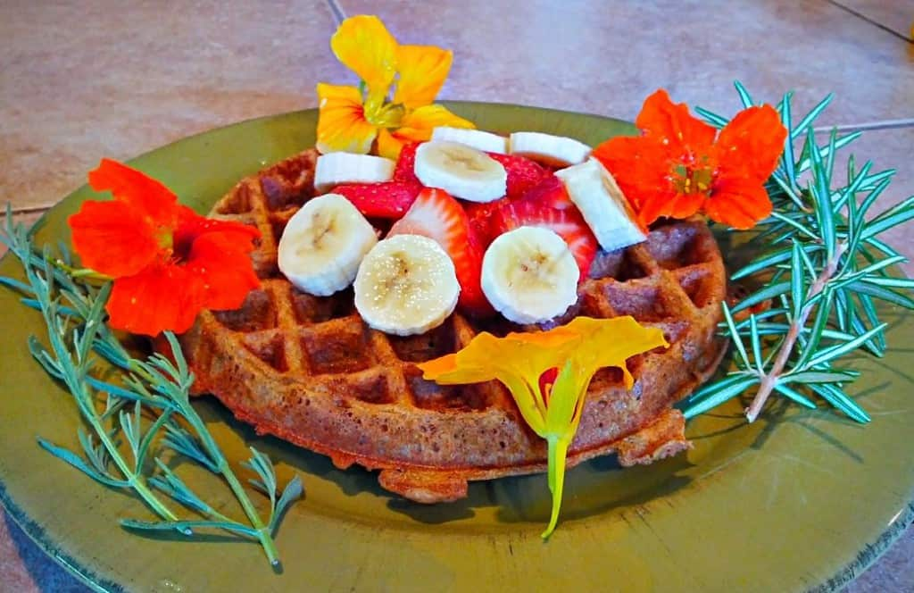 Yeasted Vegan Waffle with Flowers, fruit, and rosemary, side view